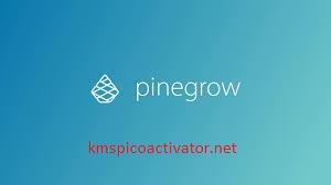 Pinegrow Web Editor 6.0 Crack