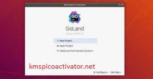 GoLand v2020.1.4 Crack